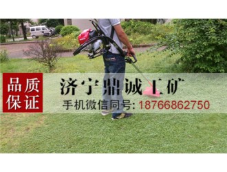 汽油背负式割草机 肩挂式草坪修整机 迷你家用草坪修剪机