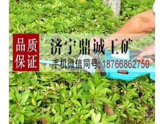 安徽滁州园林绿化充电式双刃绿篱机 锂电往复式电动修枝机