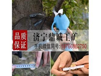 充电式电动修枝剪刀 果树粗枝园艺剪 树枝修剪机 葡萄剪枝剪