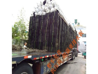 四川车库种植隔根刺排水板#宜宾15公分厚排水板