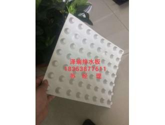 泽瑞排水板厂家%专供江苏别墅绿化用排水板