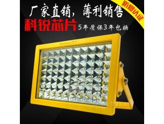 供应电镀厂150W照明灯 BC9101防爆投光灯