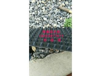 泽瑞厂家大量供应%安阳地下车库排水板
