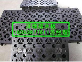 四平2公分绿化蓄排水板%延边高抗压车库排水板