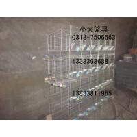 鸡笼鸽子笼兔子笼狐狸笼宠物笼运输笼鹌鹑笼鸽笼兔笼鸭笼鸟笼狗笼