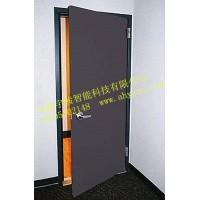 隔音门/优质冷轧钢板/安徽合肥