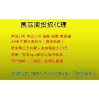 中文系统股指期货招商-瑞宝国际招一级代理