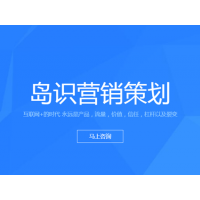 上海网站建设全营销策划网络推广网站推广网站建设网站维护