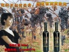 美的庄园2003冰葡萄酒 集安冰葡萄酒 北冰红冰葡萄酒 (7)