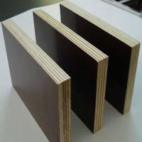 胶合板材厂高中低档杨木多层胶合包装板不开胶不起皮不断裂
