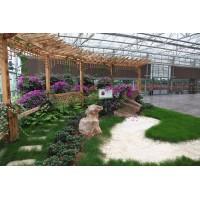 休闲生态餐厅温室大棚  一道农业