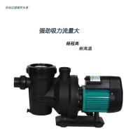 泳池强劲吸力循环水泵游泳池水处理设备过滤器循环水泵